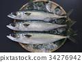 鲭鱼 海产品 鱼 34276942