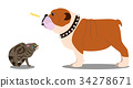 illustration, animal, animals 34278671