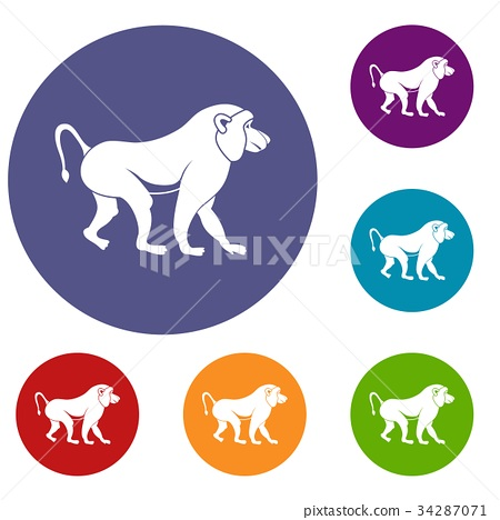 Japanese macaque icons set 34287071