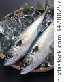 鲭鱼 海产品 鱼 34288257