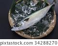 鲭鱼 海产品 鱼 34288270