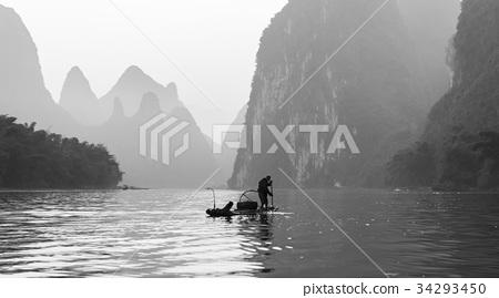 中國廣西壯族自治區桂林漓江鸕鶿 34293450