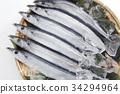 针鱼 梭鱼 鱼 34294964