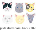 cat, set, cartoon 34295102
