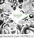 Vegetable hand drawn vector illustration. Retro 34296211