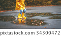 autumn, puddle, boot 34300472