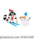 raccoon, ski, character 34304160