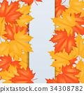 autumn leaf fall 34308782