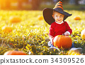 autumn boy fall 34309526
