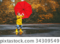 umbrella, girl, puddle 34309549