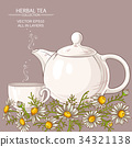 chamomile tea illustration 34321138
