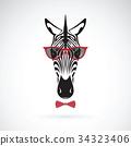 Vector of a zebra wearing sunglasses. Animal 34323406