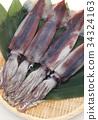 烏賊 墨魚 魷魚 34324163