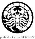 Zodiac Signs Scorpio Scorpion Icon 34325622