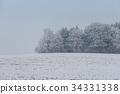 foggy winter landscape - frosty trees 34331338
