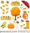 fall, autumn, vegetable 34333712