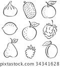 Set of fruit fresh hand draw 34341628