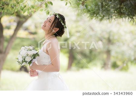 婚禮禮服婦女新娘新娘 34343960
