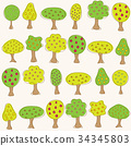 Garden pattern with different fruit trees 34345803