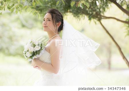 ชุดแต่งงานผู้หญิงเจ้าสาวเจ้าสาว 34347346