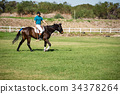 Male jockey riding horse in the ranch 34378264