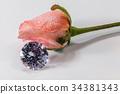 diamond flower rose 34381343