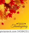 thanksgiving, background, leaf 34384231