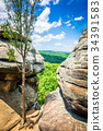 A view of the Shawnee National Forest 34391583