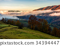 countryside, rural, tree 34394447