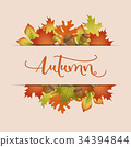 Colorful autumn leaves background 34394844