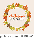 Colorful autumn leaves background 34394845