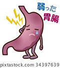 stomach, gastrointestinal tract, stomach and intestine 34397639