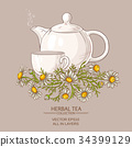 chamomile tea illustration 34399129