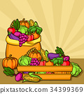 Harvest illustration with seasonal fruits and 34399369