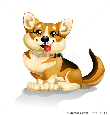 Sitting puppy of a dog on white 34404713