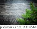 branch, fir, tree 34406568