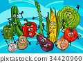 vegetable, cartoon, illustration 34420960