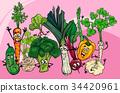vegetables group cartoon illustration 34420961