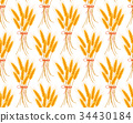 Wheat seamless pattern. Spikelets repeating 34430184
