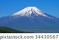 ภูเขาฟูจิ,ภูเขาไฟฟูจิ,พืชสีเขียว 34430567