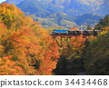 chichibu, railway, maple 34434468