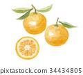 橙色 橙子 橘子 34434805
