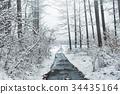 斯诺伊森林,冬天风景。 34435164