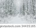 斯诺伊森林,冬天风景。 34435165