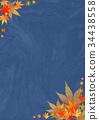 단풍 나무, 단풍나무, 단풍 34438558