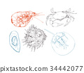 highly detailed hand drawn seafood. 34442077