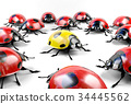 Yellow ladybug surrounded by group of red ladybugs 34445562