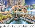Dinosaur skeleton in amusement park at night 34446555