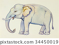 Painting  illustration lovely cartoon of elephant  34450019