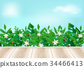 Floral plant and ladybug with wooden balcony 34466413